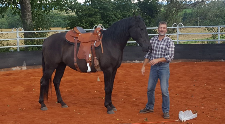 Horse_in_Harmony_Horsemanship_Unterricht_BW